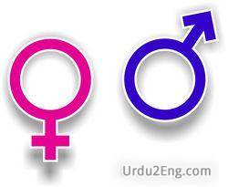 gender Urdu Meaning