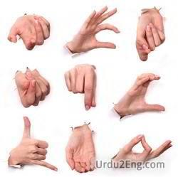gesture Urdu Meaning