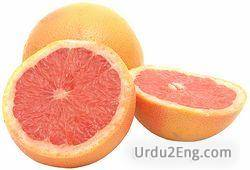 grapefruit Urdu Meaning
