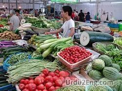 grocer Urdu Meaning