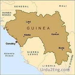 guinea Urdu Meaning
