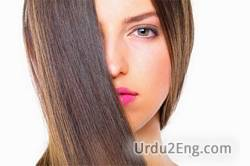 hair Urdu Meaning
