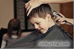 hairdresser Urdu Meaning