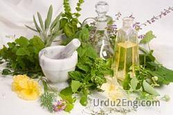 herbal Urdu Meaning