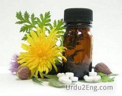 homeopathy Urdu Meaning