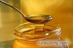 honey Urdu Meaning