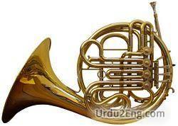 horn Urdu Meaning