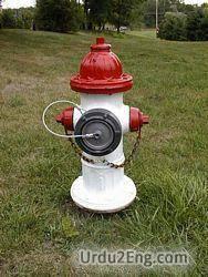 hydrant Urdu Meaning