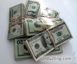 income Urdu Meaning
