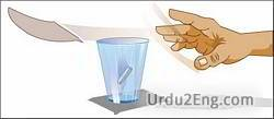 inertia Urdu Meaning