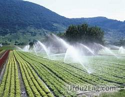 irrigation Urdu Meaning