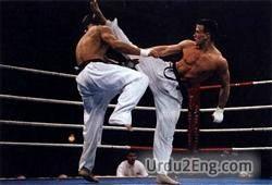 karate Urdu Meaning
