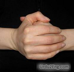 knuckle Urdu Meaning