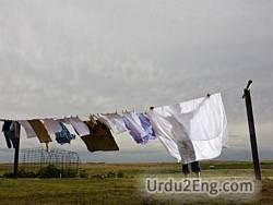 laundry Urdu Meaning