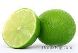 lime Urdu Meaning
