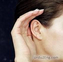 listen Urdu Meaning