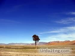 lone Urdu Meaning