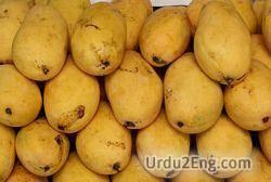 mango Urdu Meaning