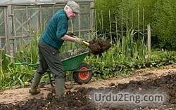 manure Urdu Meaning