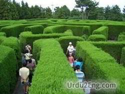 maze Urdu Meaning