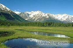 meadow Urdu Meaning