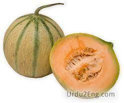 melon Urdu Meaning
