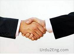merger Urdu Meaning