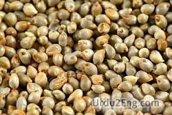 millet Urdu Meaning