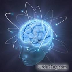 mind Urdu Meaning