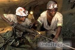 miner Urdu Meaning