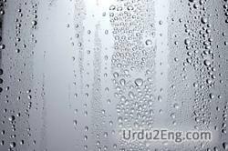 moisture Urdu Meaning