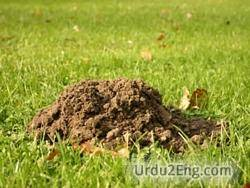 molehill Urdu Meaning