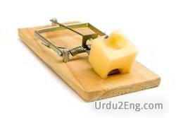 mousetrap Urdu Meaning