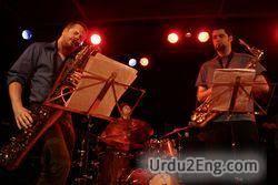 musician Urdu Meaning