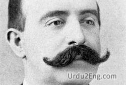 mustache Urdu Meaning
