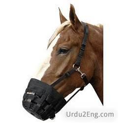 muzzle Urdu Meaning