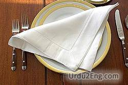 napkin Urdu Meaning