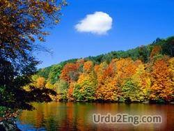 nature Urdu Meaning