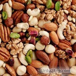 nut Urdu Meaning