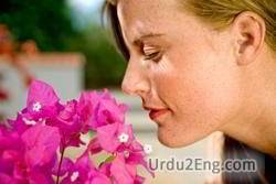 odor Urdu Meaning