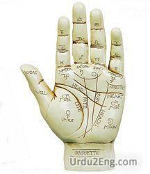 palmistry Urdu Meaning