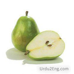 pear Urdu Meaning