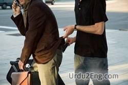 pickpocket Urdu Meaning