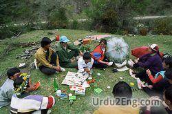 picnic Urdu Meaning