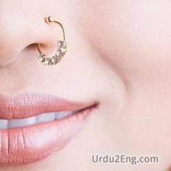 pierced Urdu Meaning