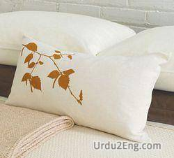 pillow Urdu Meaning