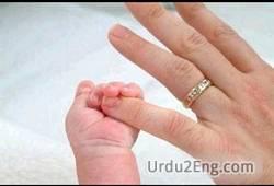 pinky Urdu Meaning