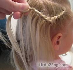 plait Urdu Meaning