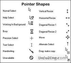 pointer Urdu Meaning