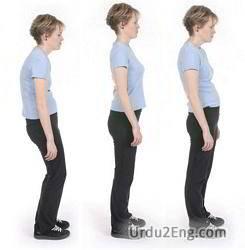 posture Urdu Meaning